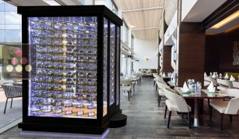 Single temperature Cellar – 3 glass walls – Suspended Bottles – Ageing or service